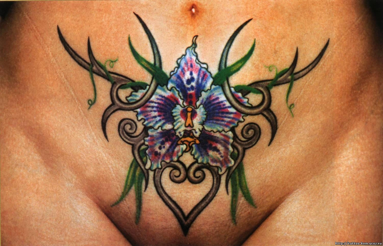 Татуировки для девушек на интимных местах 18 фотография
