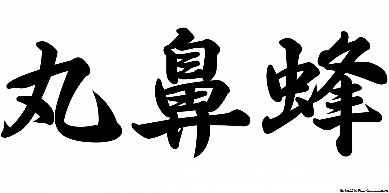 Иероглифы тату и их значение (фото)