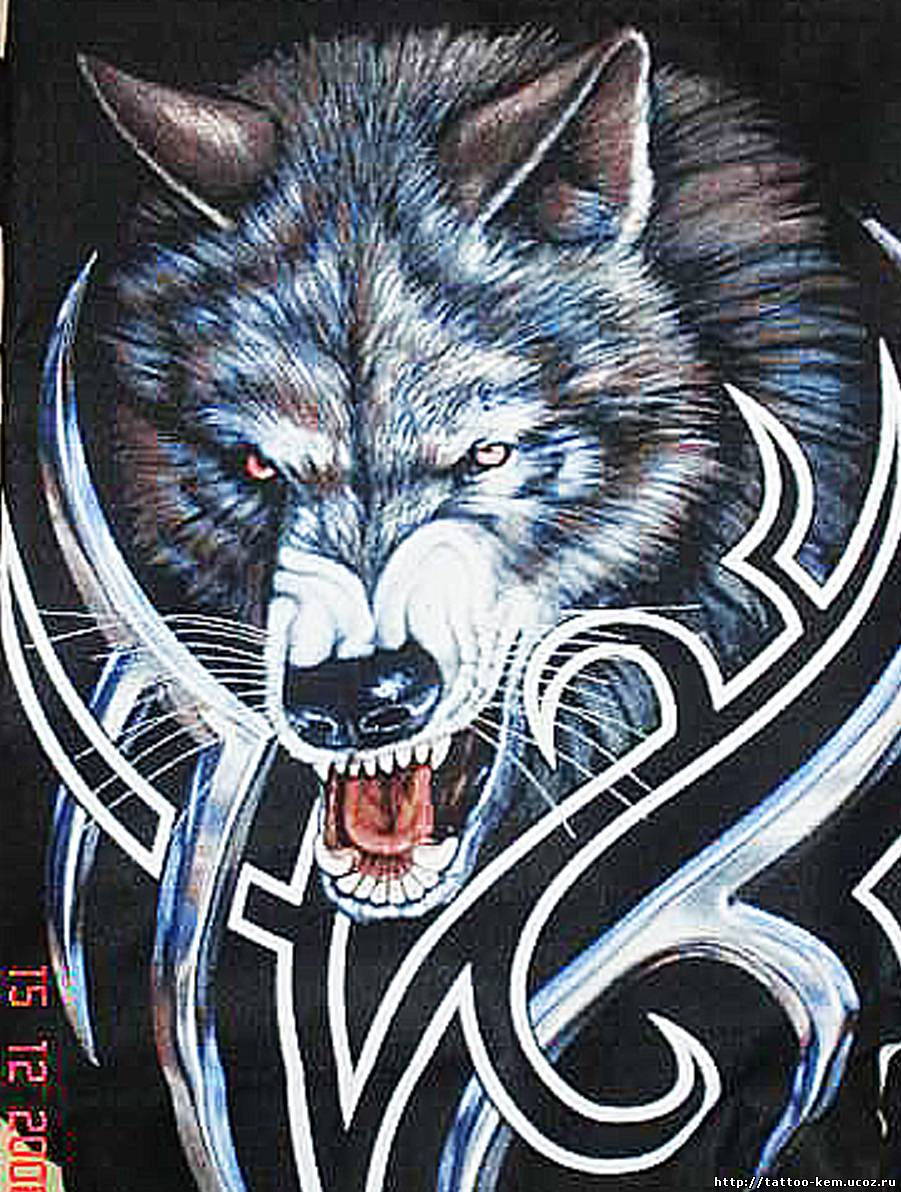 Татуировки фото волк тигр